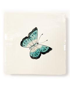 Botanical Garden Butterfly 1