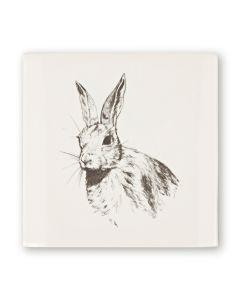 Woodland Animals Hare