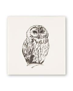 Woodland Animals Owl