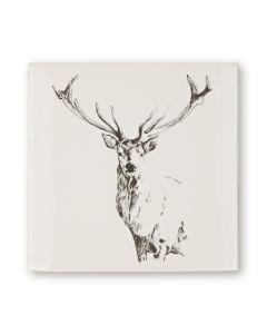 Woodland Animals Stag