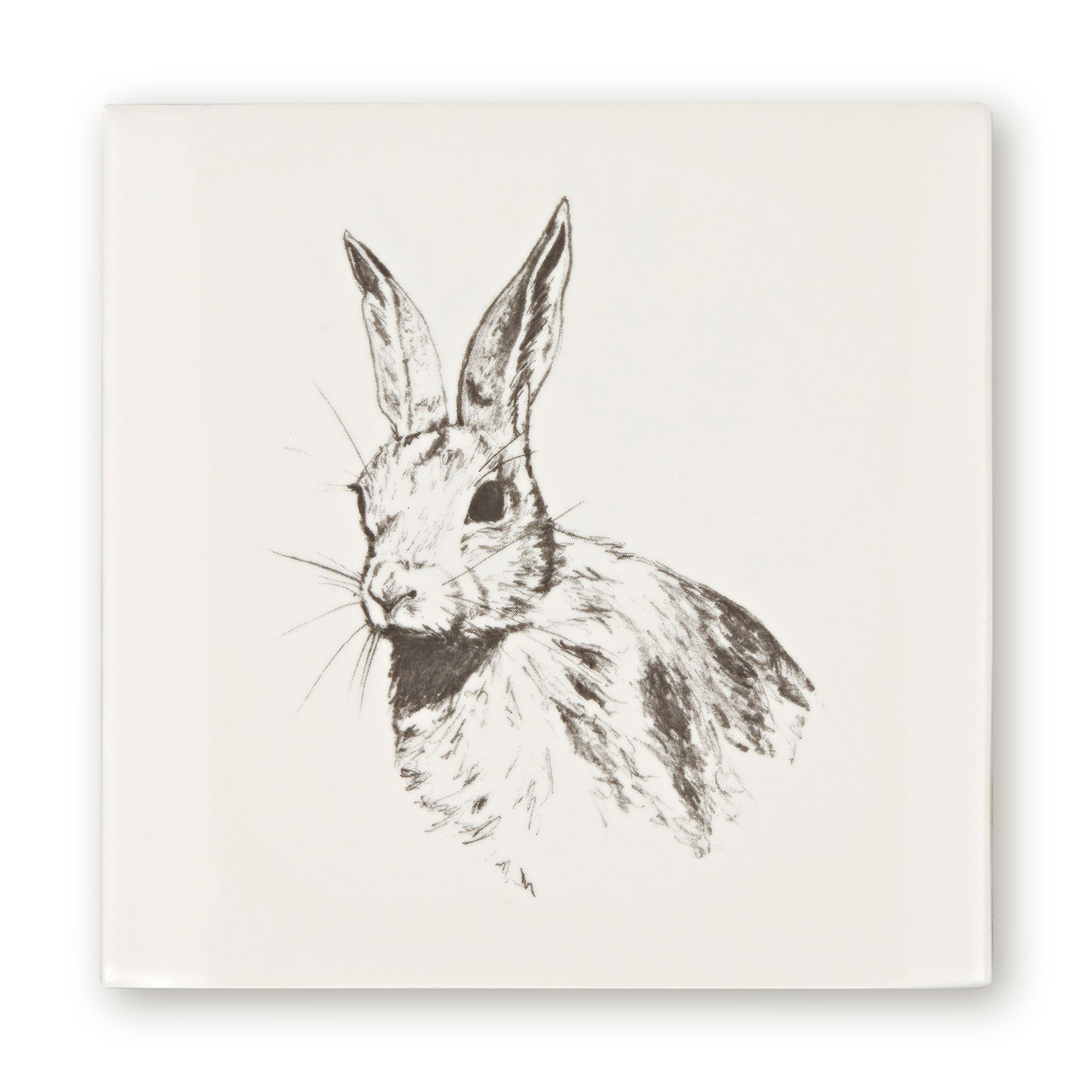 Woodland Animals Hare