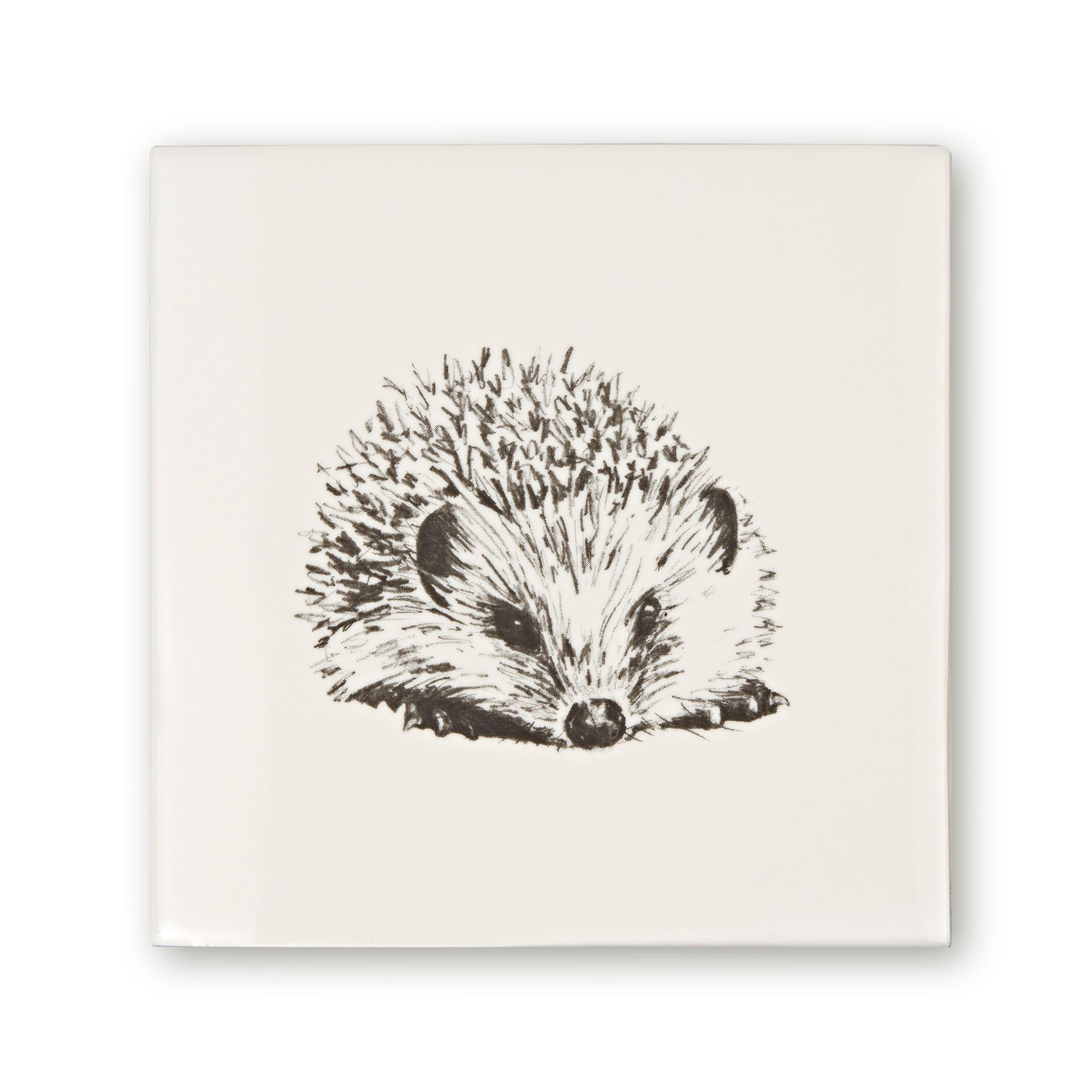 Woodland Animals Hedgehog