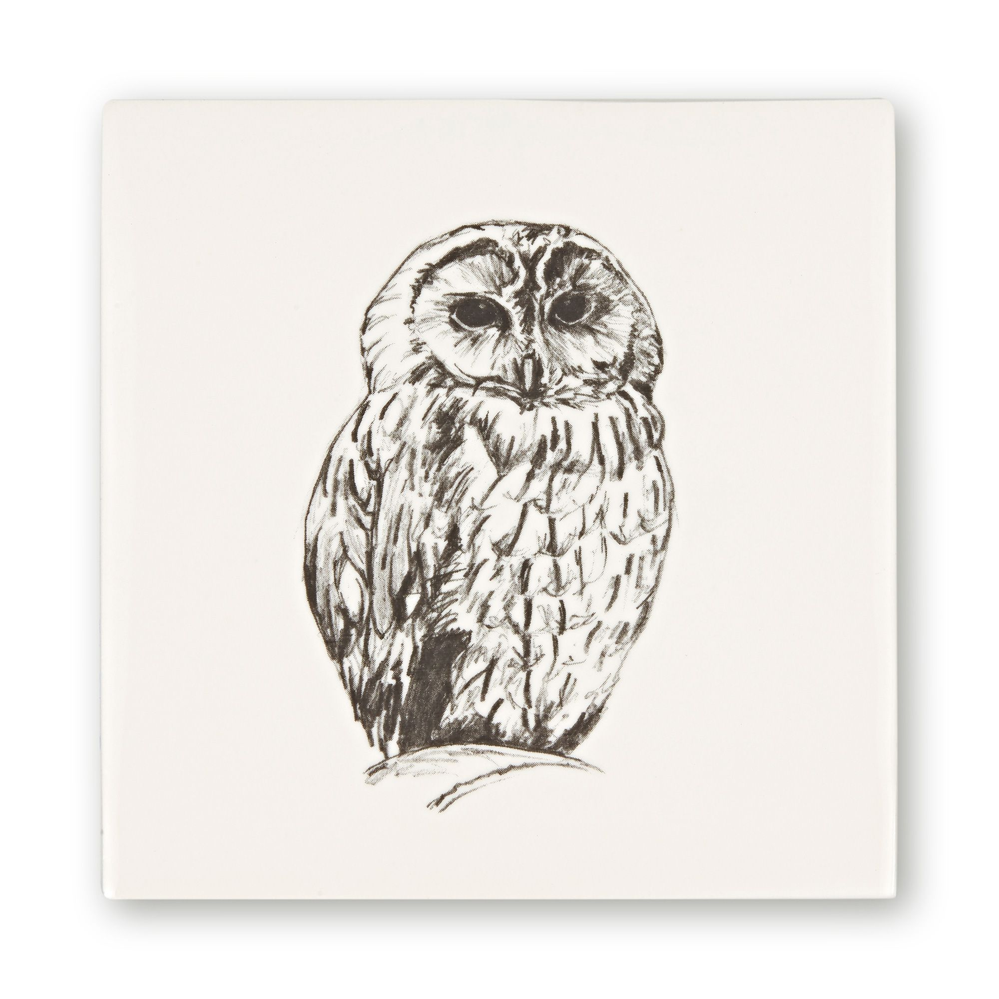 Woodland Animals Owl