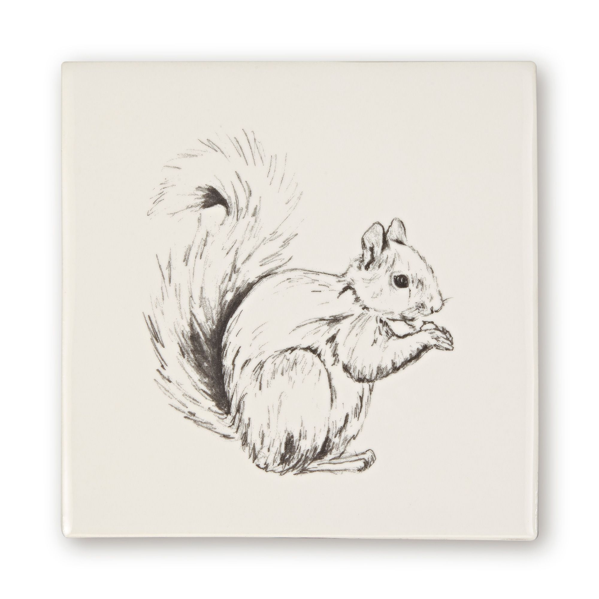 Woodland Animals Squirrel