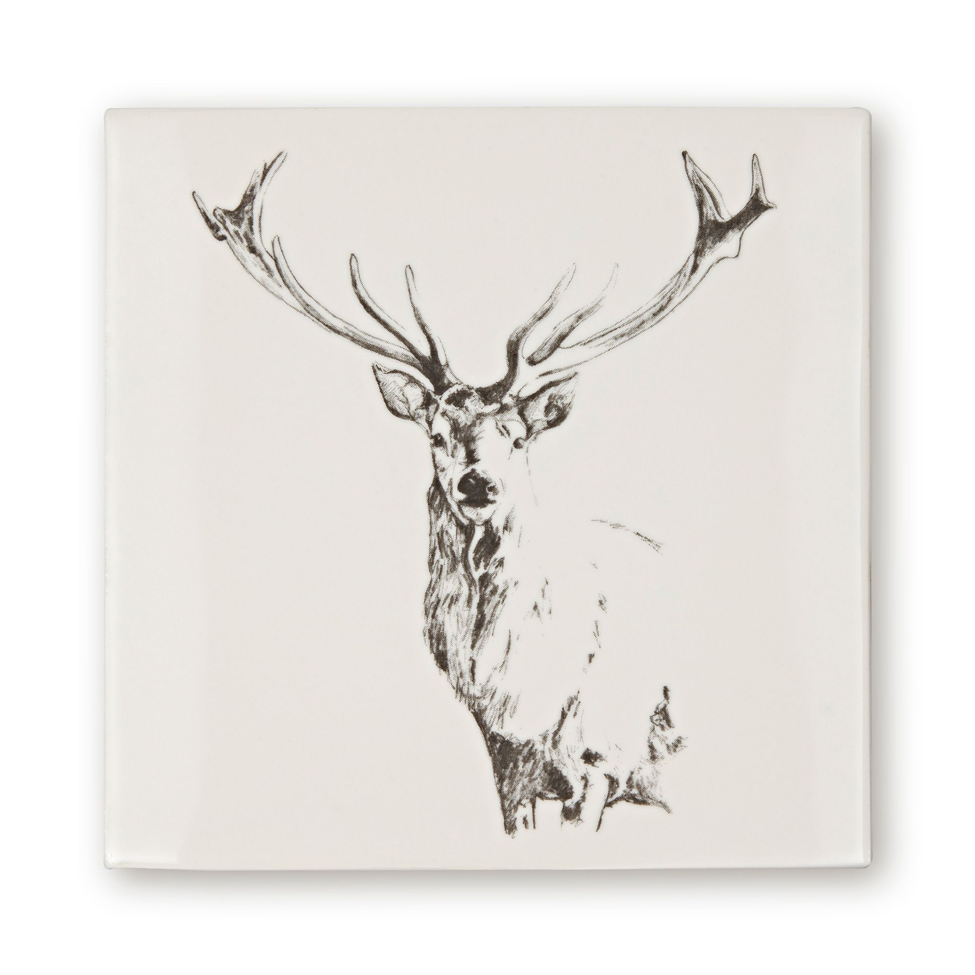 Woodland Animals Stag